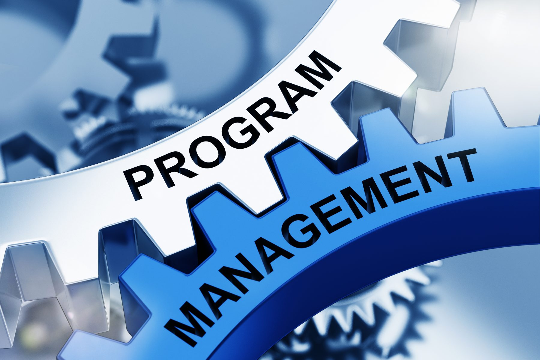 Defining Terms: Program Management and Project Management  in Entertainment Destination Development